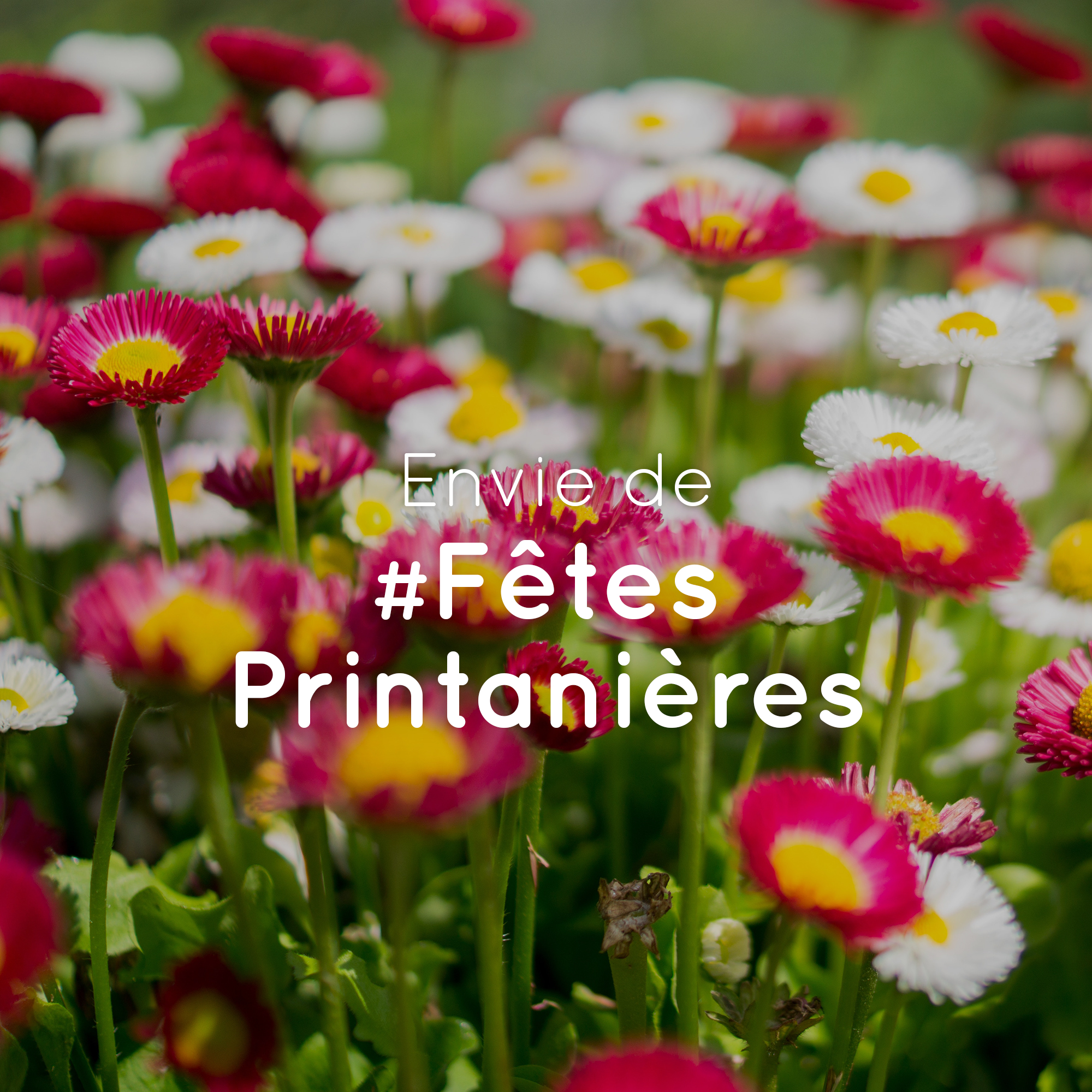 Fête Printanièresv2