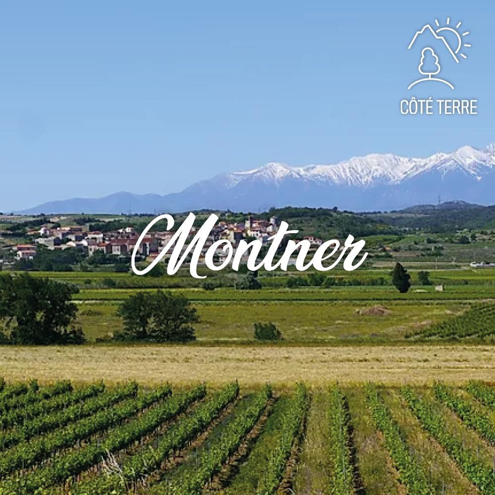 Montner_Perpignan_Méditerranée_Tourisme
