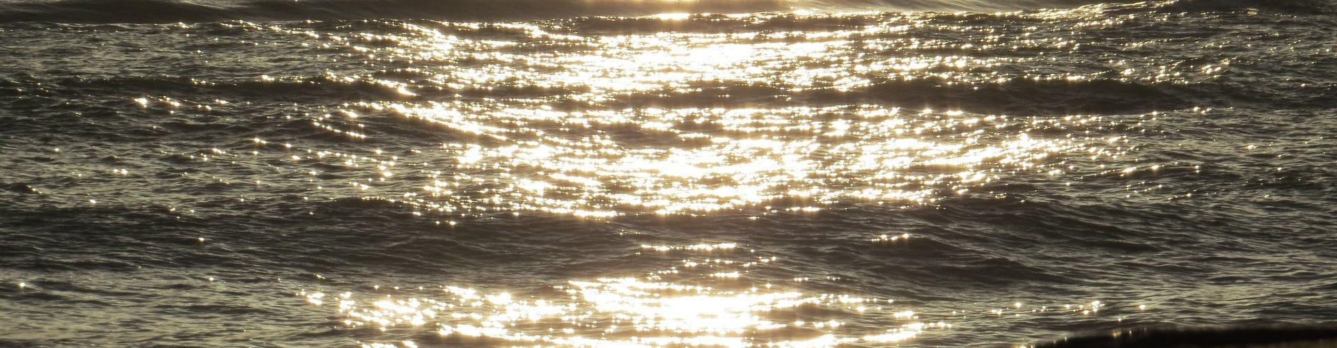 Lever de soleil hivernal - BIT Torreilles - © C. Esparrac-min